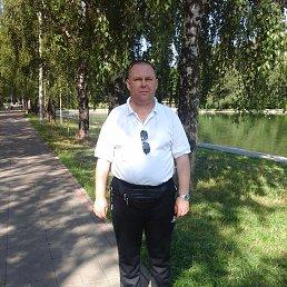 Степан, 43 года, Гагарин