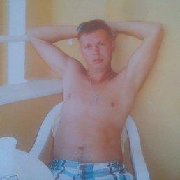 Сергей, 43 года, Приморск