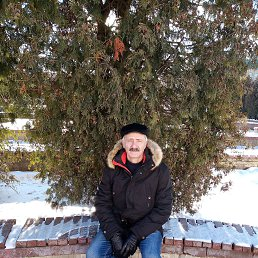 Борис, 57 лет, Ульяновск