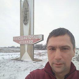 Николай, 36 лет, Плавск