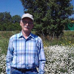 Александр, 65 лет, Кемерово