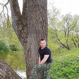 Илья, 36 лет, Балабаново
