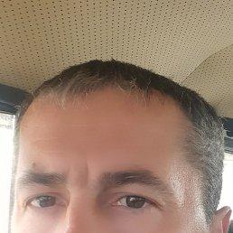 Андрей, 42 года, Малая Вишера