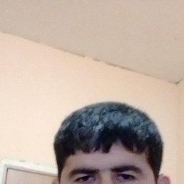 Баха, 25 лет, Воронеж