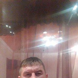 Dimarik, 28 лет, Липецк