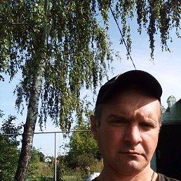 Александр, 37 лет, Добринка