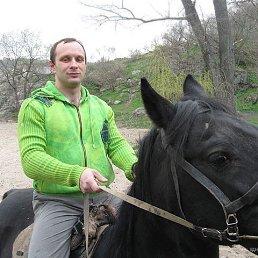 Алексей, 42 года, Запорожье
