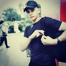 Николай, 20 лет, Балашиха