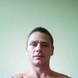 Виталий, 32 года, Химки
