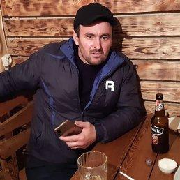Асик, 34 года, Буйнакск