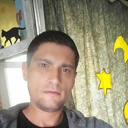 Maksим, 37 лет, Вишневое