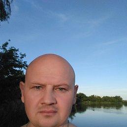 Тимур, 44 года, Северодонецк
