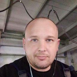 Роман, 41 год, Белгород