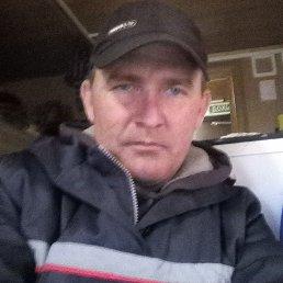 Владимир, 43 года, Новосибирск