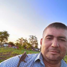 Николай, 36 лет, Ейск