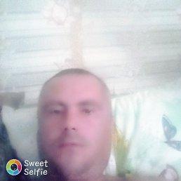 Антон, 39 лет, Пермь