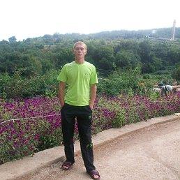 Андрей, 28 лет, Киев
