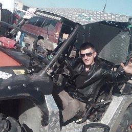 Александр, 28 лет, Купянск