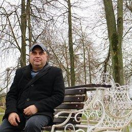 Николай, 46 лет, Минск