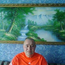 Александр, 42 года, Белгород