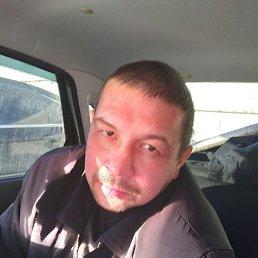 Макс, 42 года, Альметьевск