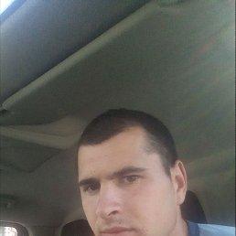 Андрей, 21 год, Очаков