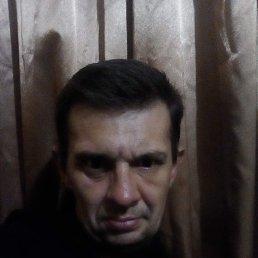 Игорь, 40 лет, Житомир