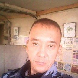 Александр, 37 лет, Черемхово