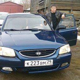 Степан, 28 лет, Тосно