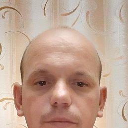 Анатолий, 34 года, Шостка