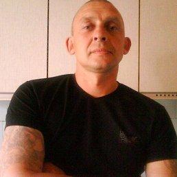 Геннадий, 52 года, Вязьма