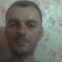 Дмитрий, 43 года, Козьмодемьянск