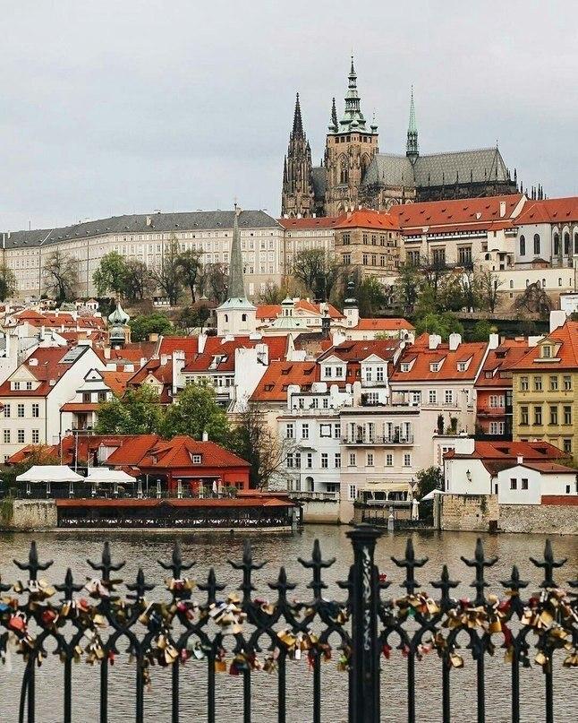 Посадите меня в самолет и отправьте в Прагу, пожалуйста! - 6