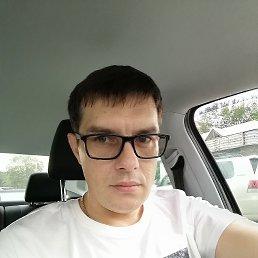 Виталий, 39 лет, Тюмень