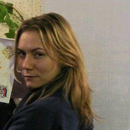 Елена, 34 года, Калининград