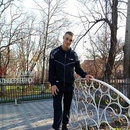 Николай, 29 лет, Дальнереченск