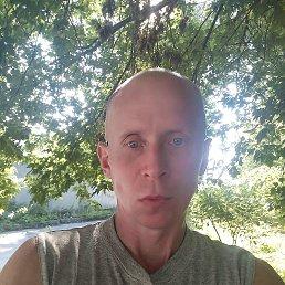 Дмитрий, Киев, 45 лет