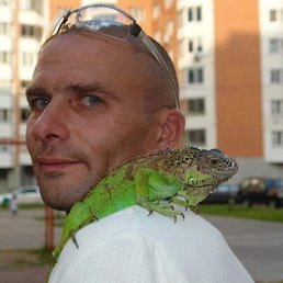 Александр, 45 лет, Клин