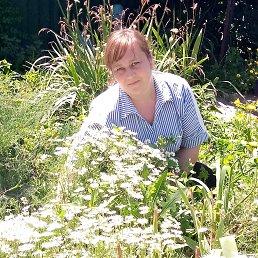 Елена, 35 лет, Белгород