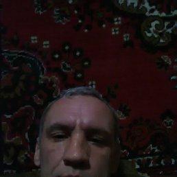 Виталий, 37 лет, Молодогвардейск