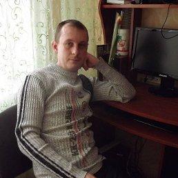 Андрей, 45 лет, Тольятти