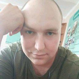 Денис, 29 лет, Першотравенск