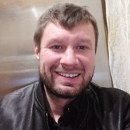 Максим, 33 года, Ярославль