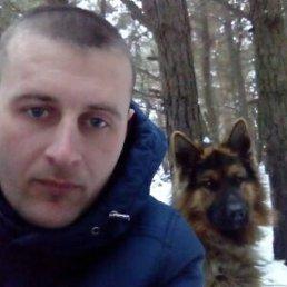 Роман, 29 лет, Лисичанск
