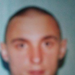 Николай, 36 лет, Сафоново