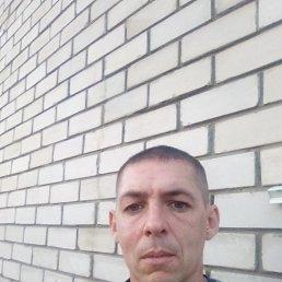 Миша, 36 лет, Славгород