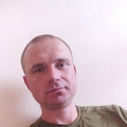 Олексій, 33 года, Умань