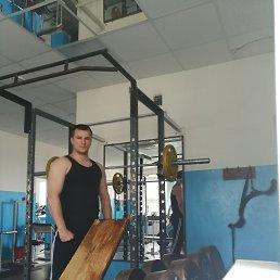 Константин, 27 лет, Бологое