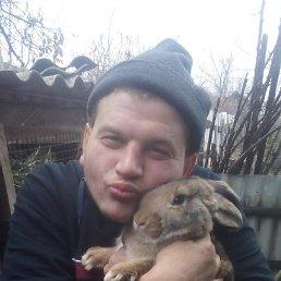 Лёха, 25 лет, Лисичанск
