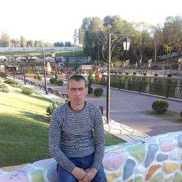 Дима, Калуга, 39 лет